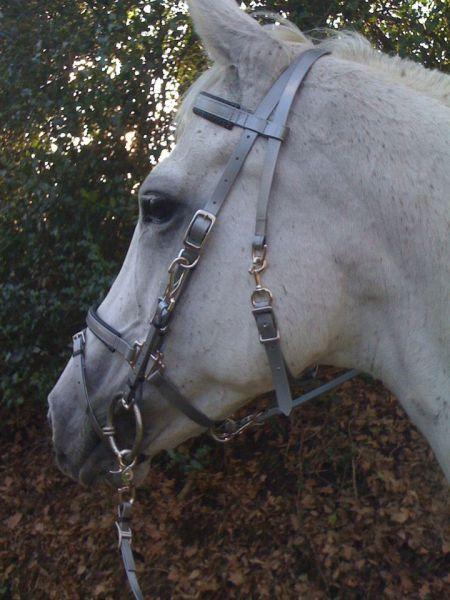 White /& Hunter Green Adjustable Riding Reins Navy Tan